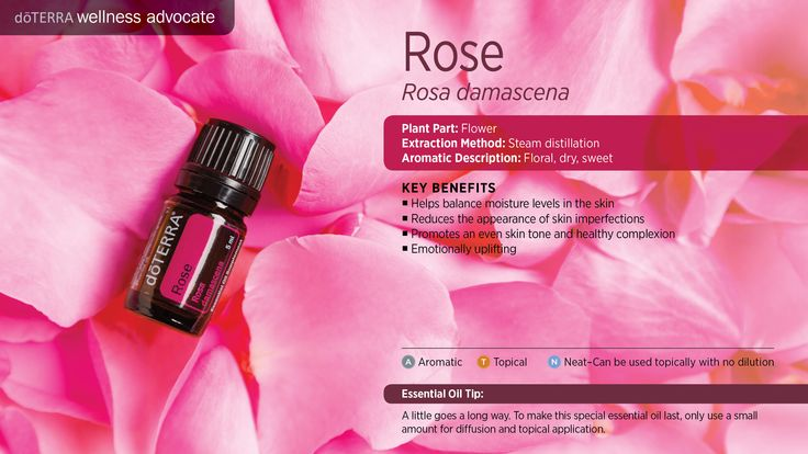 Fabulous florals rose jasmine dr julie bates - Rose essential oil business ...